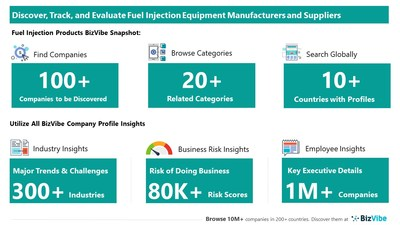 Snapshot of BizVibe's fuel injection supplier profiles and categories.