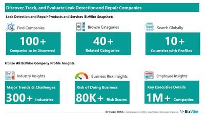 Snapshot of BizVibe's leak detection company profiles and categories.