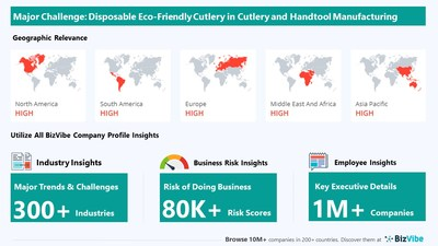 Snapshot of key challenge impacting BizVibe's cutlery and handtool manufacturing industry group.
